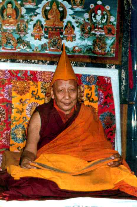Ling Rinpoche Photo 6 sizes
