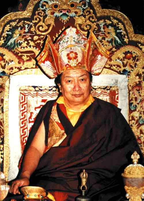Minling Trichen Rinpoche Photo 6 sizes