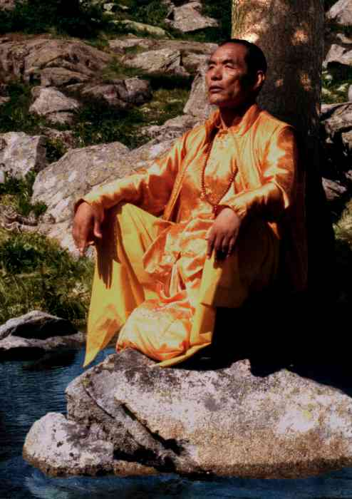 Nyoshul Khen Rinpoche Photo 6 sizes