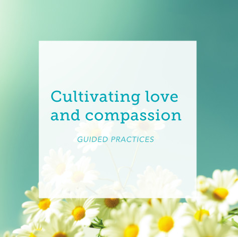 Cultivating Love and Compassion – Guided practices MP3