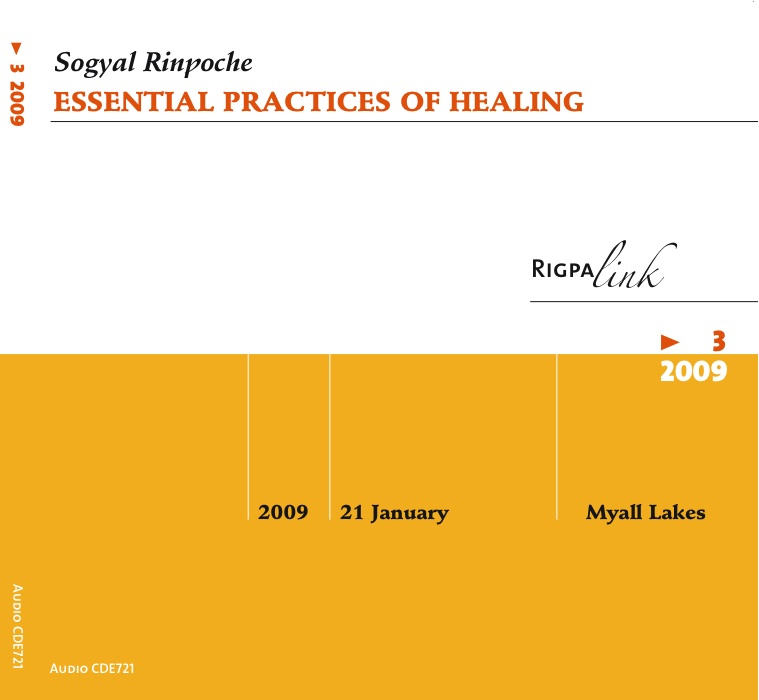 Essential Practices of Healing CD or DVD