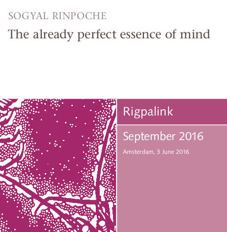 The already perfect essence of mind MP3 or DVD