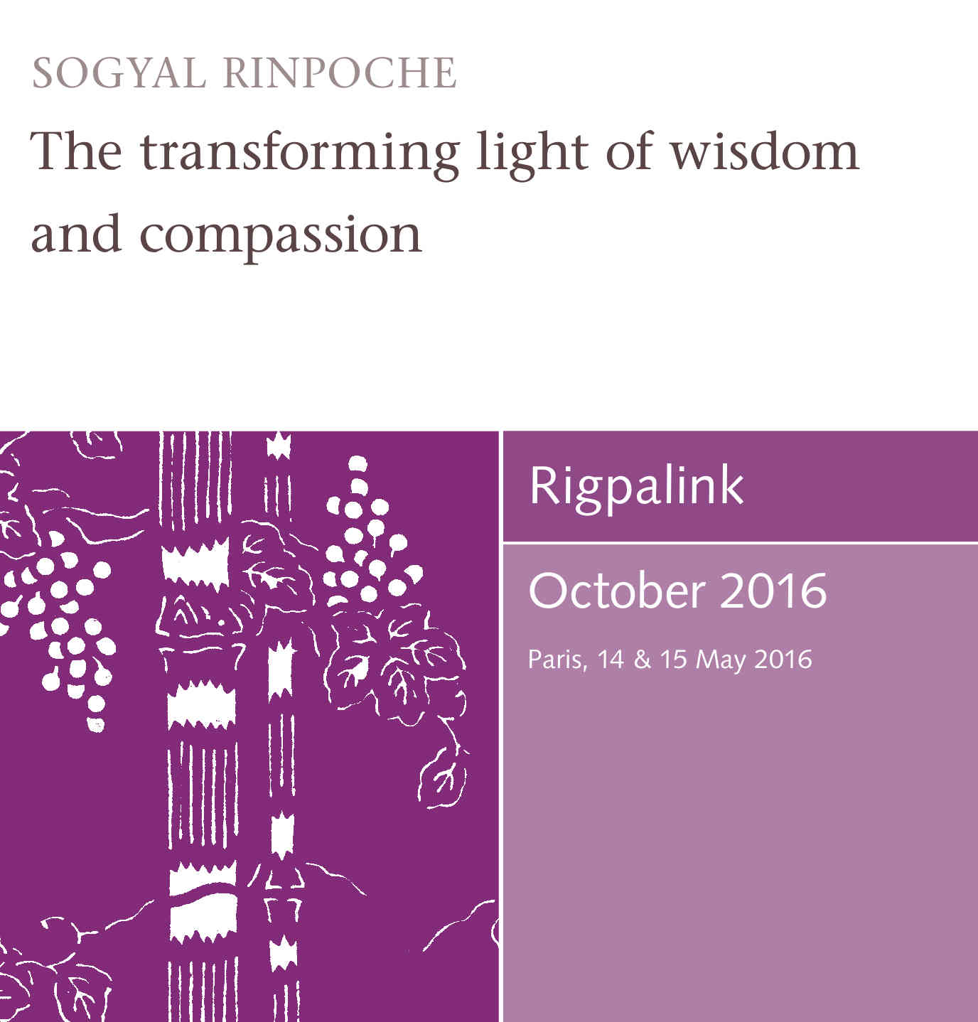 The transforming light of wisdom and compassion MP3 or DVD