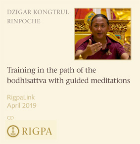 Training in the path of the bodhisattva with guided meditations audio or video
