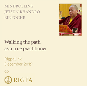 Walking the path as a true practitioner audio or video