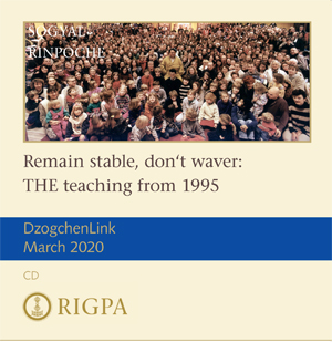 Remain stable, don't waver: THE teaching from 1995 audio or video download or MP3 CD