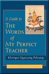 A Guide to The Words of My Perfect Teacher (Zindri) by Khenpo Ngawang Pelzang