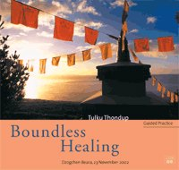 Boundless Healing (Guided Practice) 2 audio CD