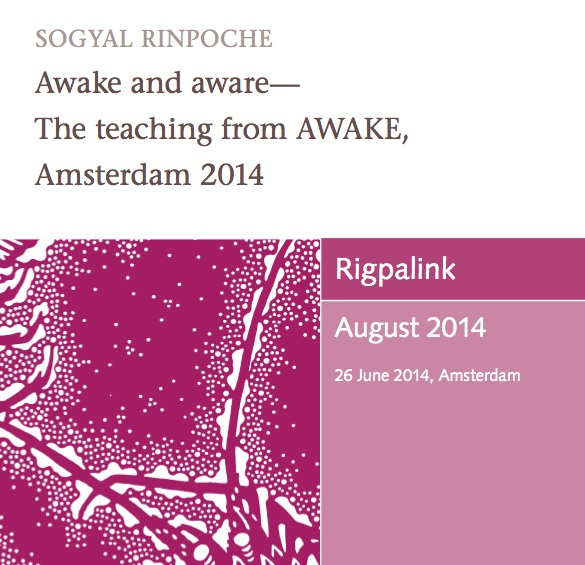 Awake and aware - The teaching from AWAKE, Amsterdam 2014 MP3 or DVD