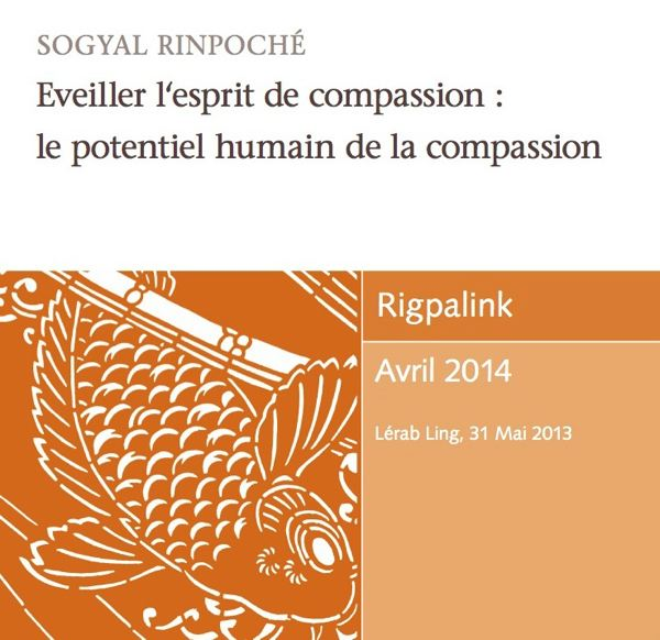 Eveiller l'esprit de compassion : le potentiel humain de la compassion MP3 or DVD