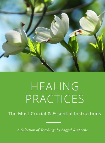 Healing Practices - The Most Crucial & Essential Instructions 1 Booklet, 2DVD & 1 MP3