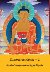 L'Amour-Tendresse 2 2 CD ou 1 DVD