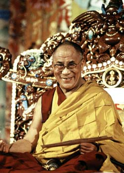 His Holiness the Dalai Lama reading Photos 3 sizes