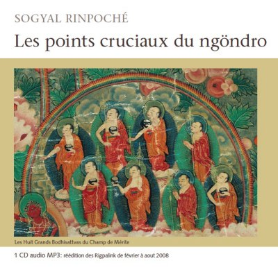 Les points cruciaux du Ngöndro audio MP3
