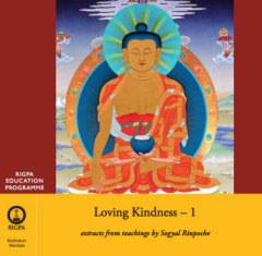 Loving Kindness part 1 2 audio CD or 1 DVD