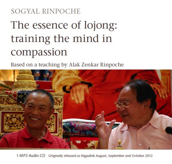 The essence of Lojong: training the mind in compassion