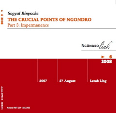 The Crucial Points of Ngöndro Part 3 MP3