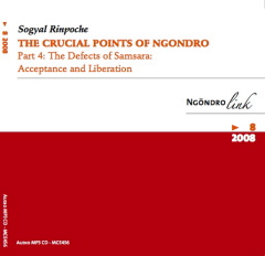 The Crucial Points of Ngöndro Part 4 MP3