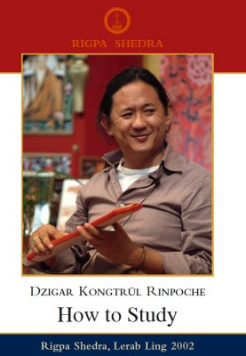 How to Study Dzigar Kongtrul Rinpoche
