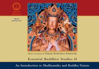 Essential Buddhist studies II An introduction to Madhyamika and Buddha Nature