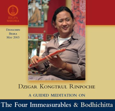 Guided Meditation on the Four Immeasurables and Bodhichitta 2 CD