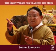 The Eight Verses for Training the Mind audio CD