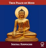 True Peace of Mind audio CD or DVD